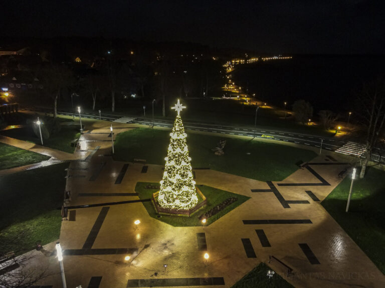 Christmas trees are lit in Neringa