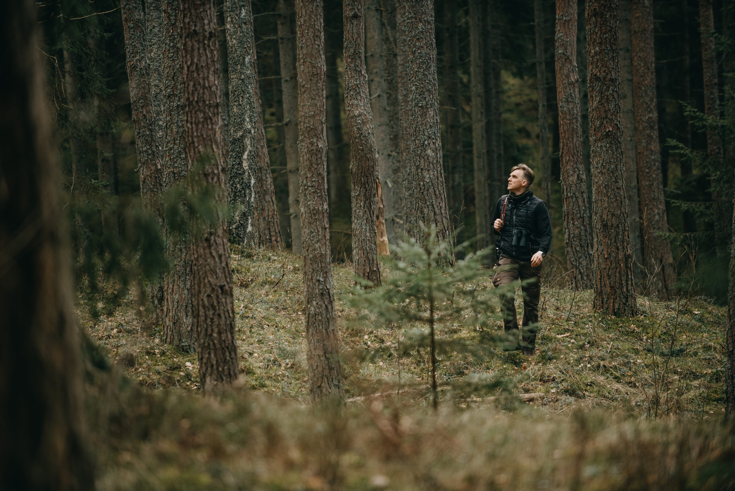Guided tour FOLLOWING TRAILS AND PROMENADES OF JUODKRANTĖ'S ANCIENT WOODS
